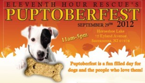 Eleventh Hour Rescue's Puptoberfest 2012