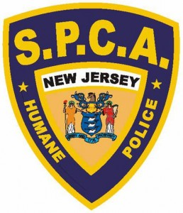 New Jersey Society for the Prevention of Cruelty to Animals