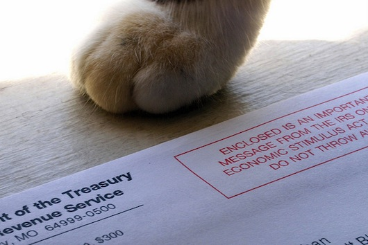 Tax Break for foster pet parents