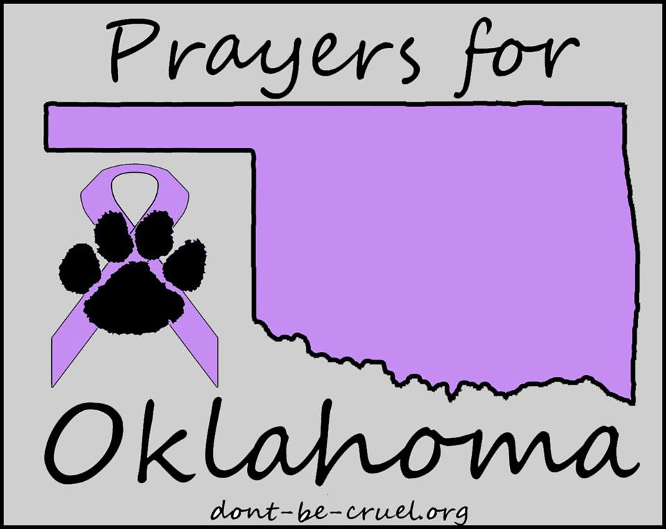 Prayers for Oklahoma - Don't Be Cruel Animal Cruelty Awareness