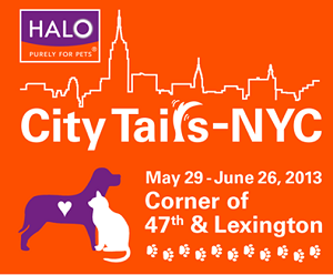 City Tails _ NYC by Halo Pets