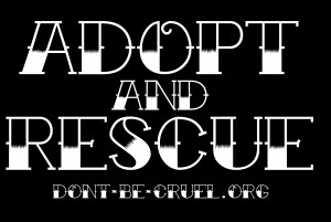 Adopt and Rescue image