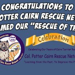 Don't Be Cruel Rescue of the Month - Col. Potter Cairn Rescue Network