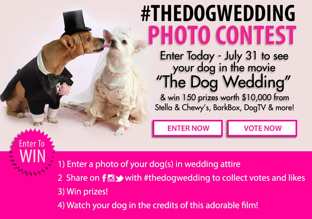 #TheDogWedding Photo Contest