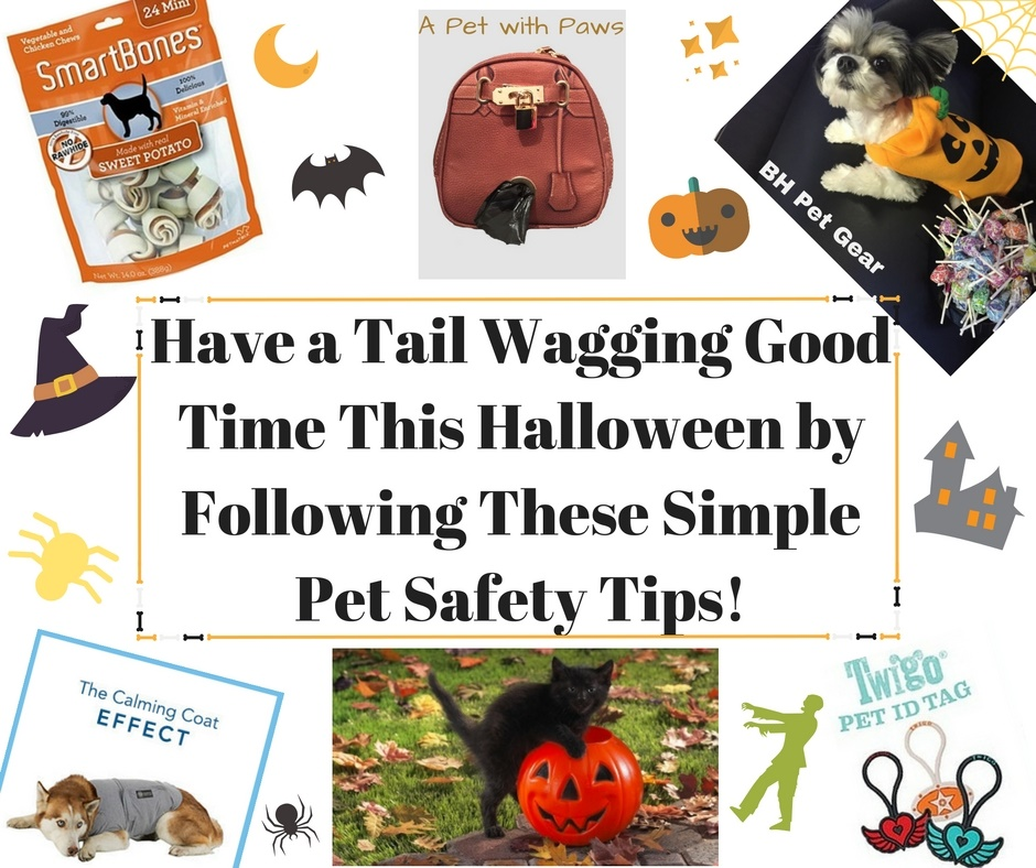 Halloween Pet Safety Tips 2016