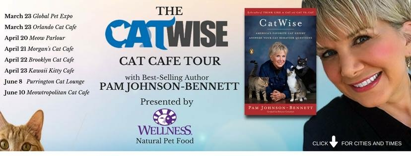 CatWise Cat Cafe Tour 2017