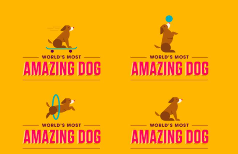 The World's Most Amazing Dog Competition