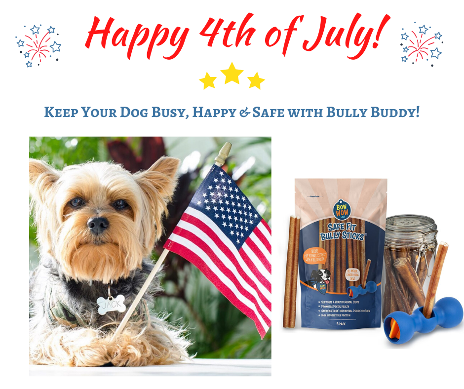 Bully Buddy - Happy Fourth of July